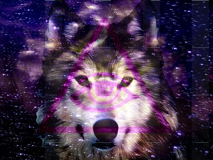 hipster_space_wolf_by_billythekid1470-d6ud9hs